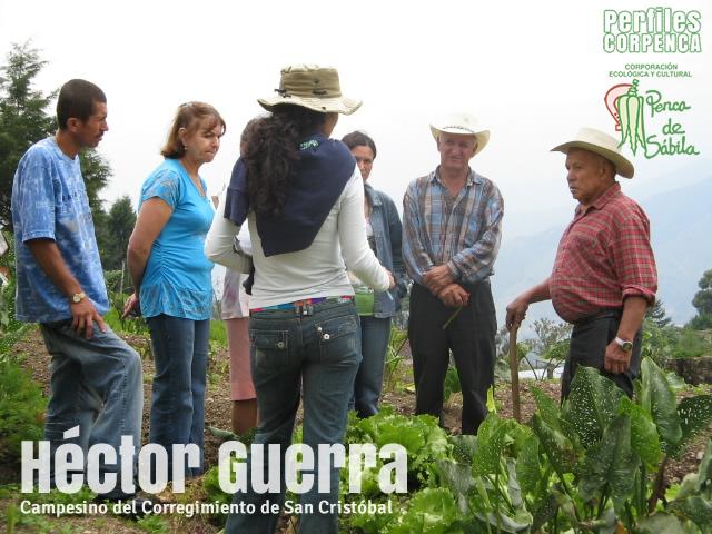 PERFILES CORPENCA - Héctor Guerra